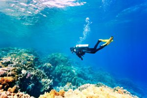 Scuba Diver in Vietnam looking at reef