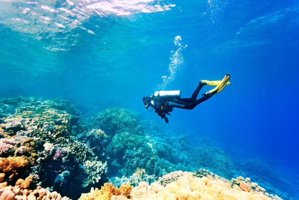 Scuba Diver in Vietnam looking at reef